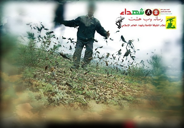تصویر از راهکاری برای نجات از ملخ ها