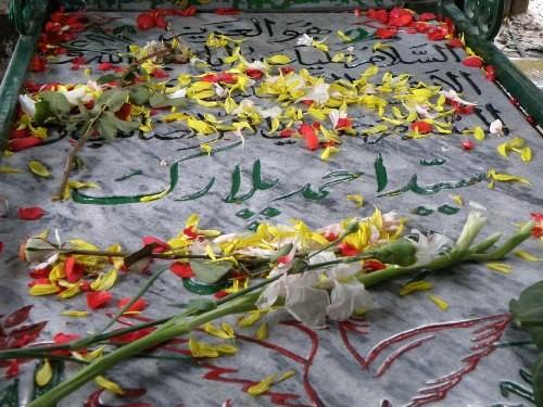 تصویر از بوی عطر قبر شهید